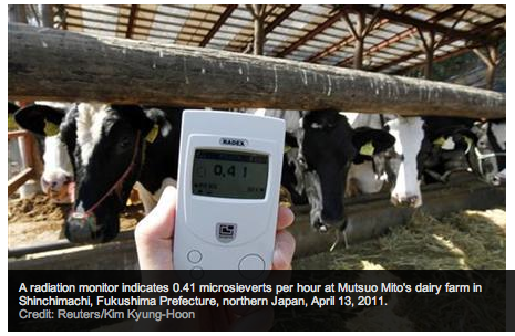 Demand for personal Geiger counters soars in Japan